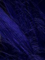 Royal blue color swatch