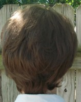 10th Doctor wig back view
