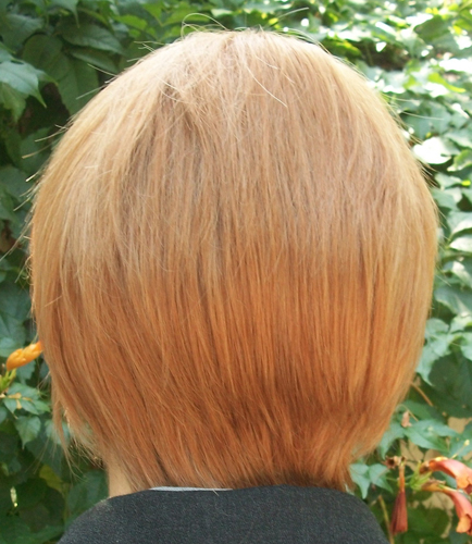 Hannibal cosplay wig back view