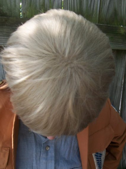Jean Kirstein cosplay wig top view