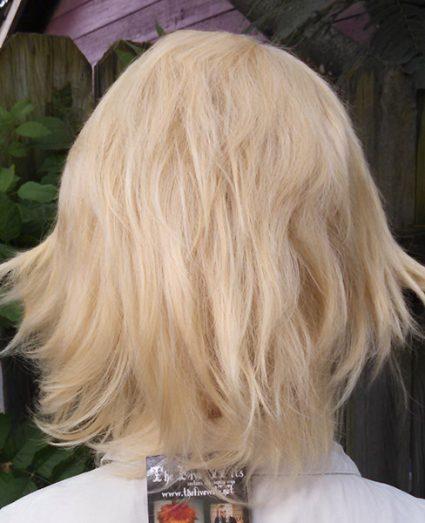 Dirk wig back view