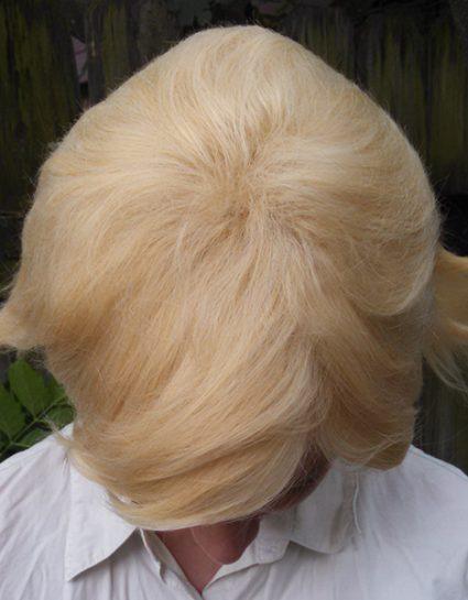 Dirk wig top view