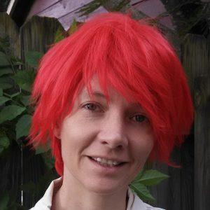 Seijuro cosplay wig