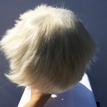 Bakugo wig top view