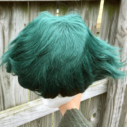 Deku wig top view