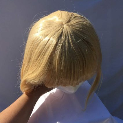 Howl Wig Top View