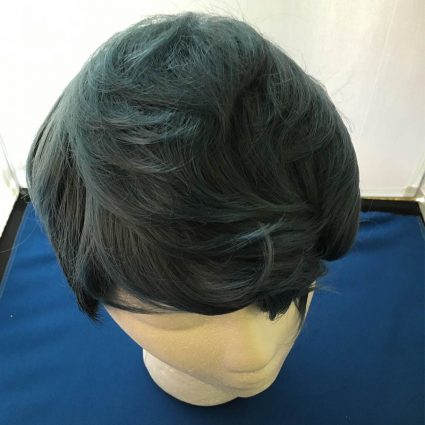 Python cosplay wig top view