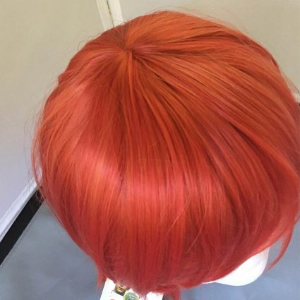 Chise cosplay wig top view