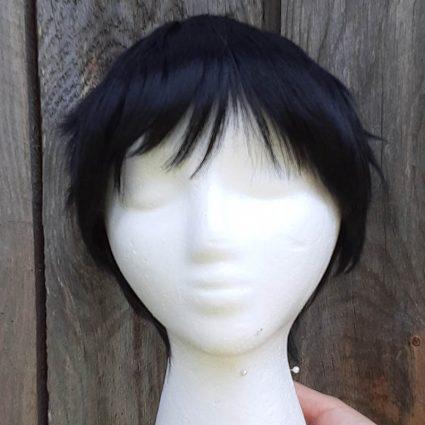Roy Cosplay Wig