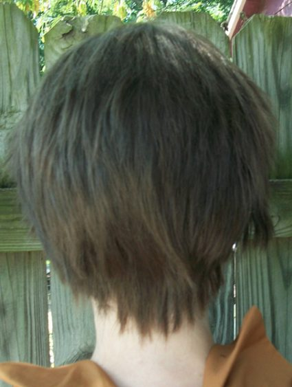 Eren cosplay wig back view