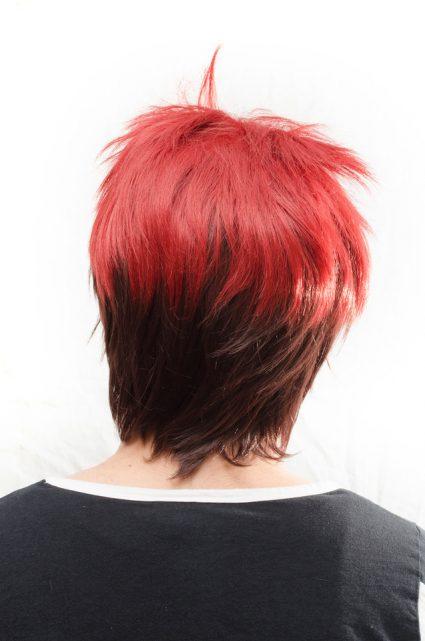 Taiga Kagami cosplay wig back view