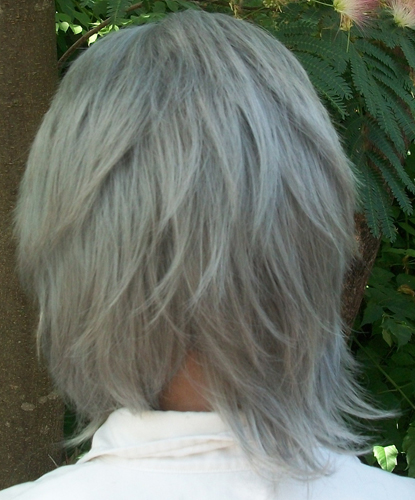 Stein cosplay wig backview