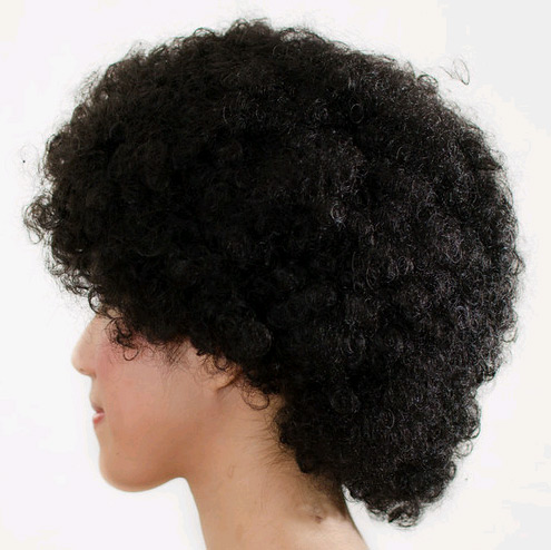 Last Fro Standing Black Afro Wig The Five Wits