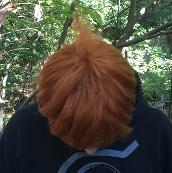 Hux wig top view