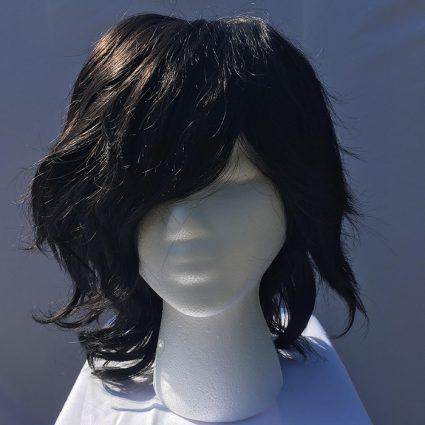 Aizawa cosplay wig