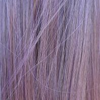 Gothic Purple