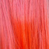 Splash Page Red