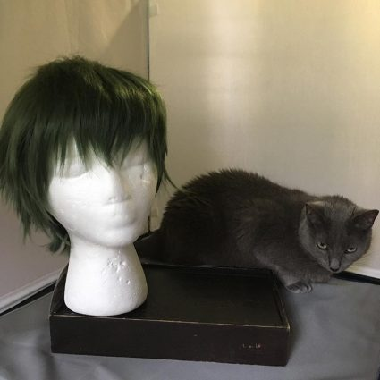 Midorima wig and cat